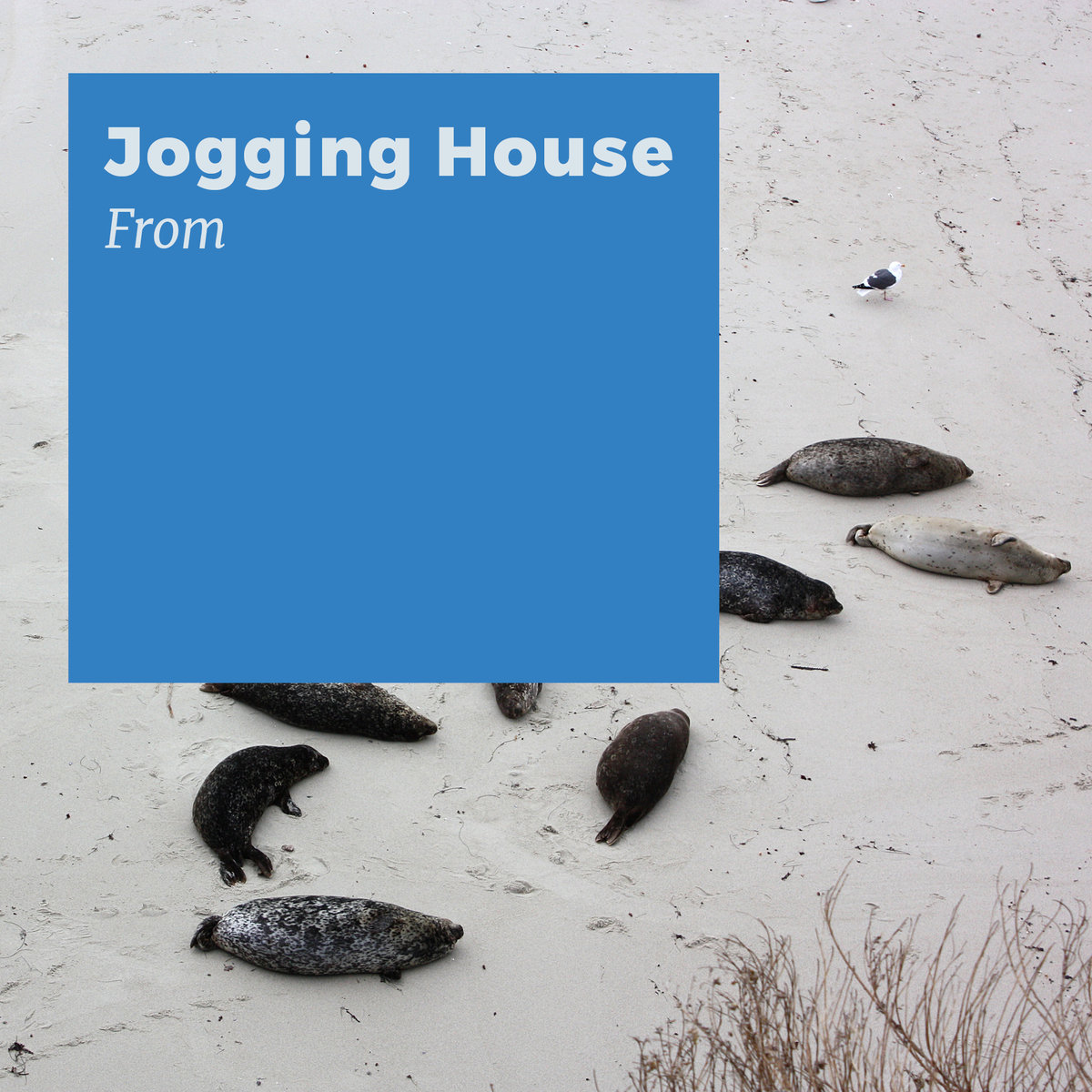 Jogging House-- From ---Jogging House-Art